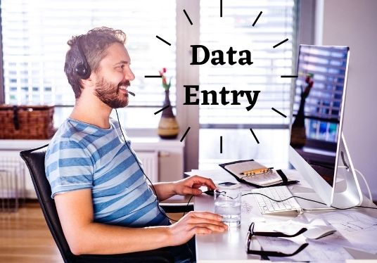 I will be data entry,  copy paste,  web research,  web scraping and excel data entry