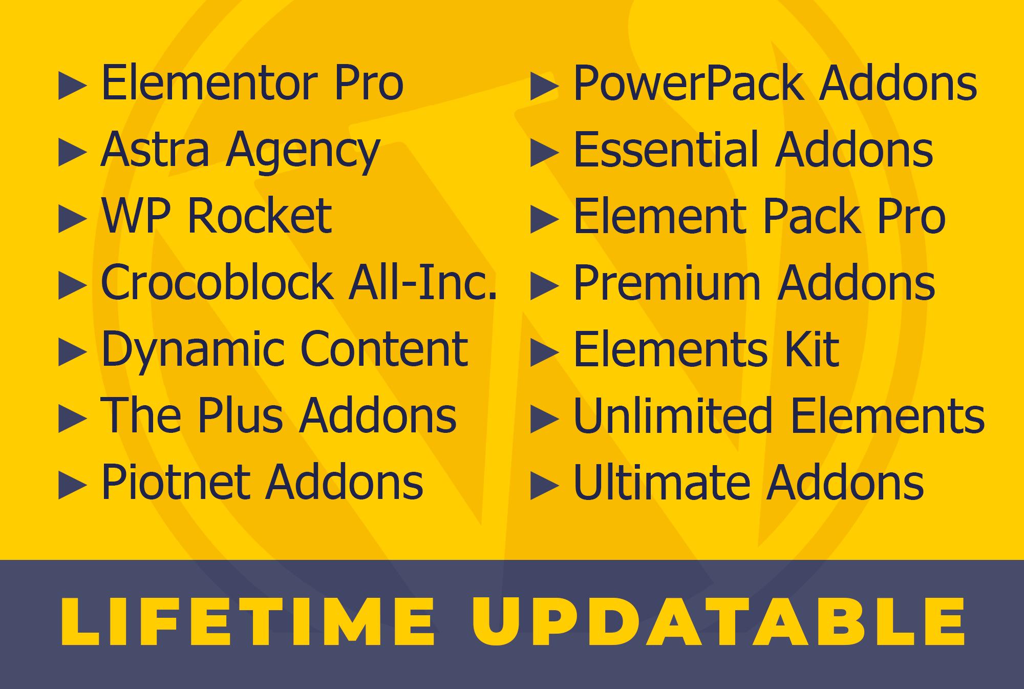 Install Elementor Pro,  Astra Pro Agency,  Crocoblock Jet Bundle,  WP Rocket on WordPress website