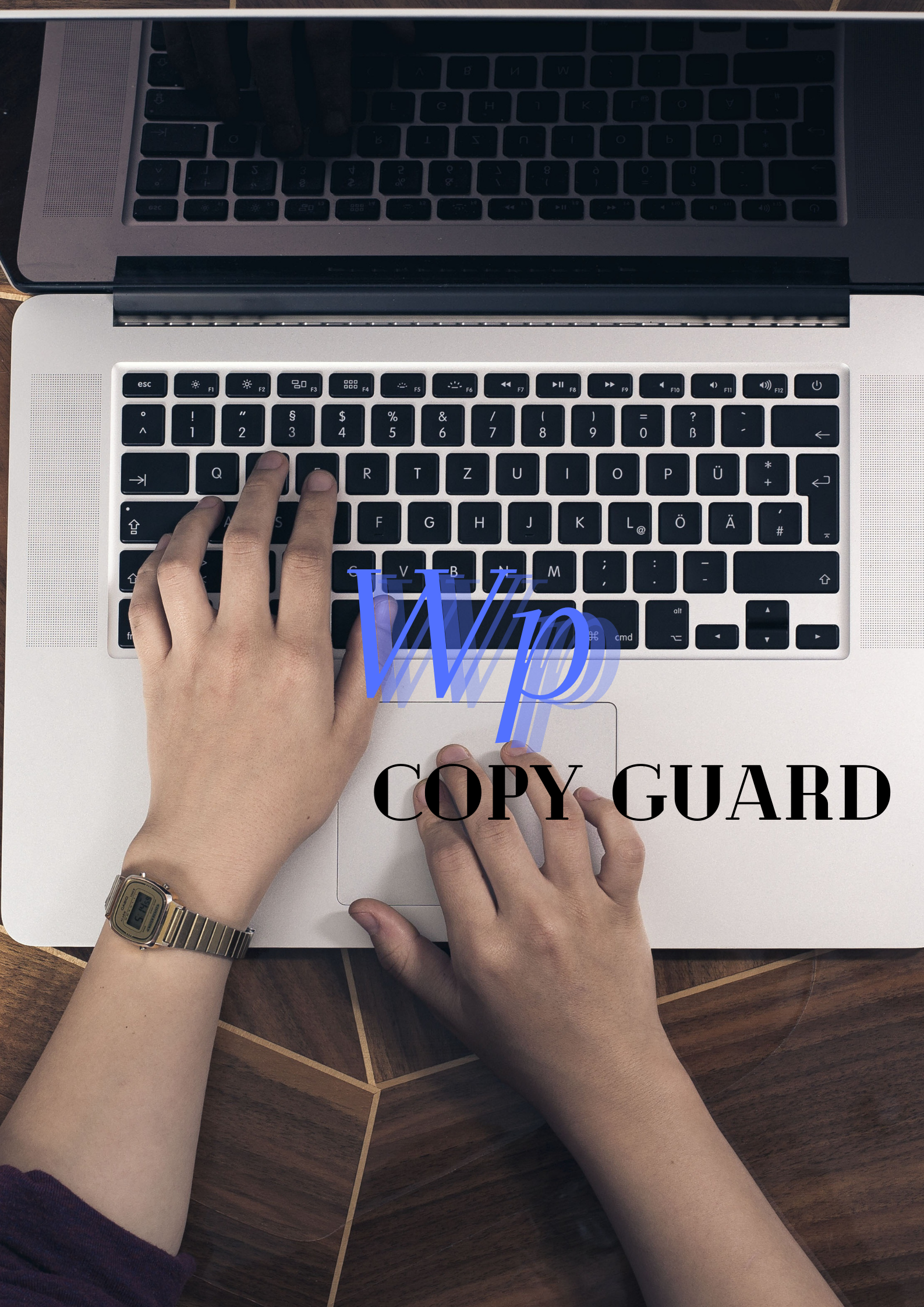 blog copy guard for WordPress.