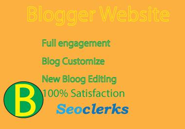 I will professional blogger full website edit