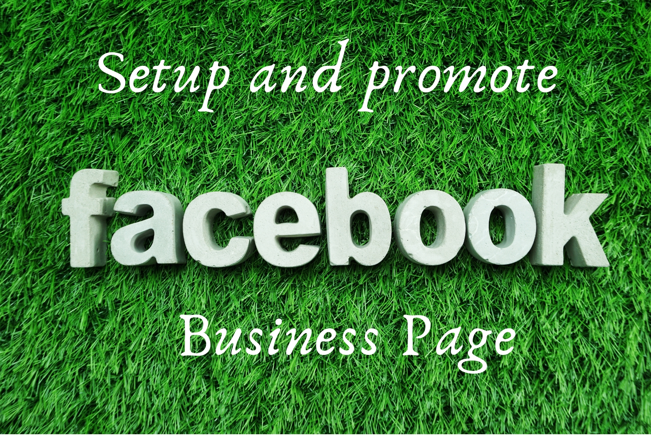 I will Setup and promote of your FB business page
