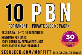 Create 10 HIGH AUTHORITY PERMANENT PBN Backlinks