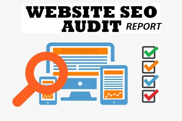 make SEO review report and contender investigation of site