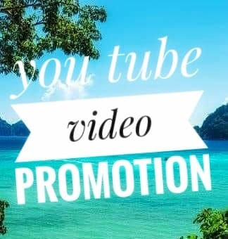 YouTube Video & channl Promotion non drop guarantee and honestly delivery