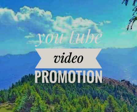 You tube video promotion instant good delivery for work