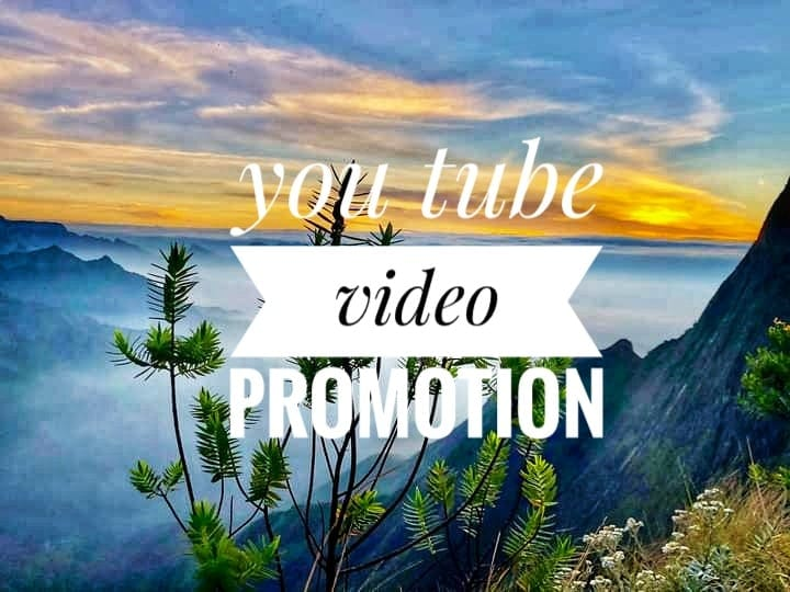 honestly as well as good delivery video promotion work non drop guarantee
