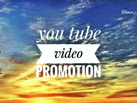 Instant non drop guarantee you tube video promotion social media marketing work