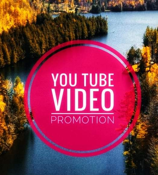 Very fast delivery job you tube video promotion social media job