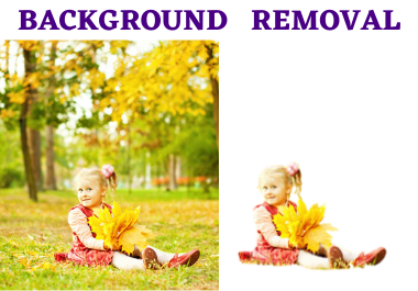 Do 25 Background removal/Background Change in 10 hours