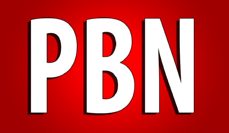 Build 15 High DA 25 TO 40+ HomePage PBN Backlinks - Dofollow High Quality Backlinks