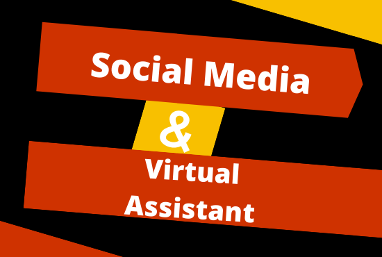 I will do your social media manager and virtual assistant