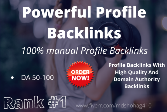 I will do 200+ high authority domain SEO profile backlinks