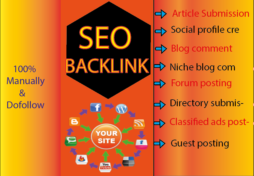 I will do Monthly Seo Package With Daily Reports,  Done Manually