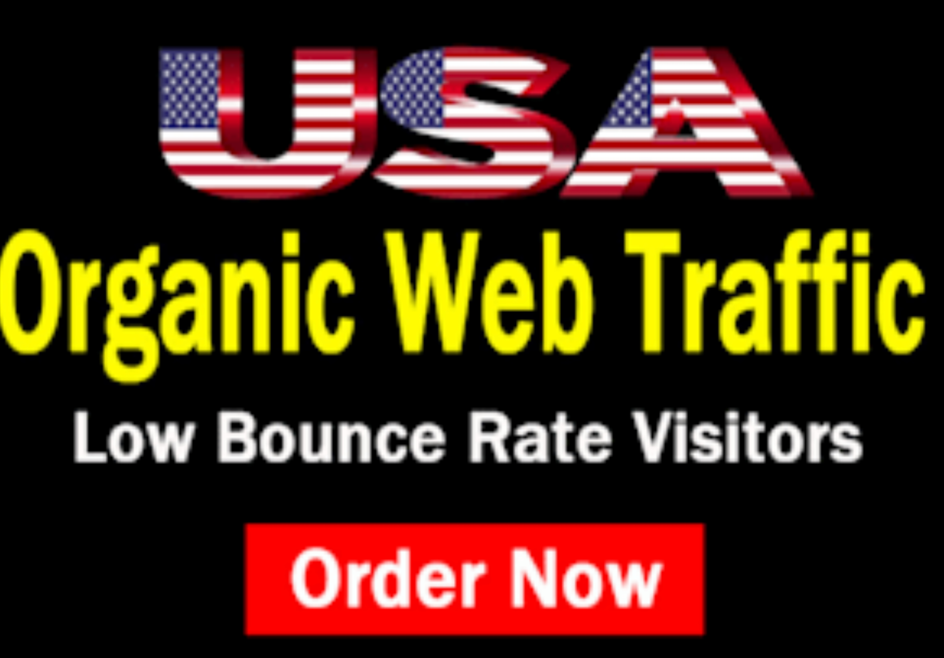 I will drive 1000 real human visitors,  organic targeted USA web traffic to a website