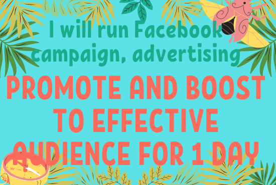 I will run Facebook campaign,  advertising,  promote and boost to effective audience