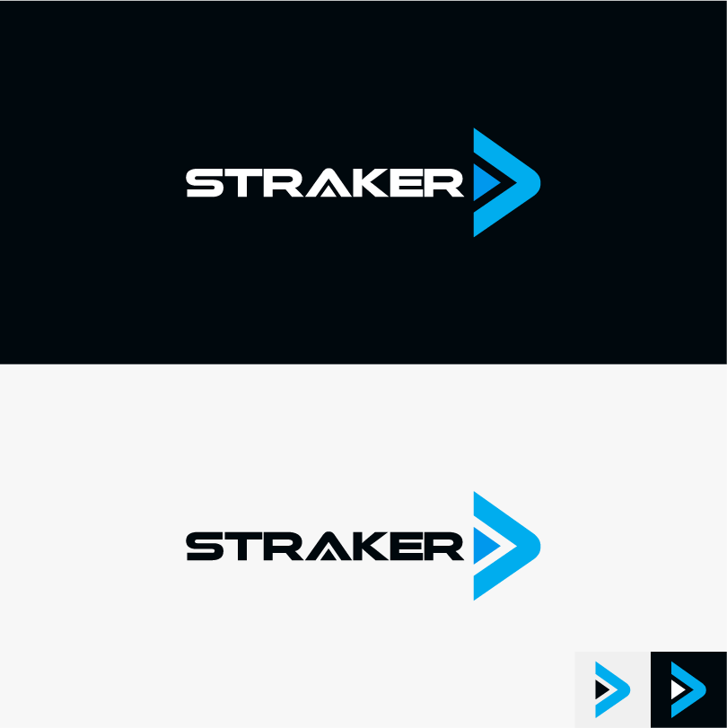I will design your professional logo in 12 hours