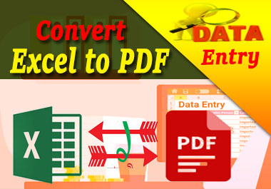 I will Convert pdf to excel or word and any type of data entry work