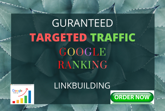 I Offer Guaranteed Google 1st page ranking with link building service