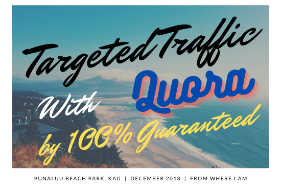 100 Guaranteed target traffic offer with 30 blank answers.