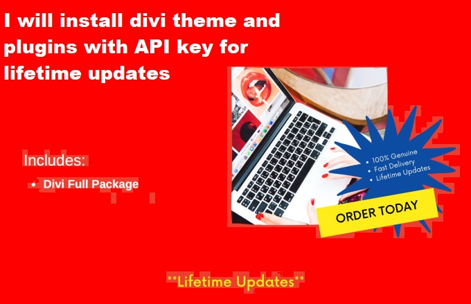 I will install divi theme and plugins with API key for lifetime updates