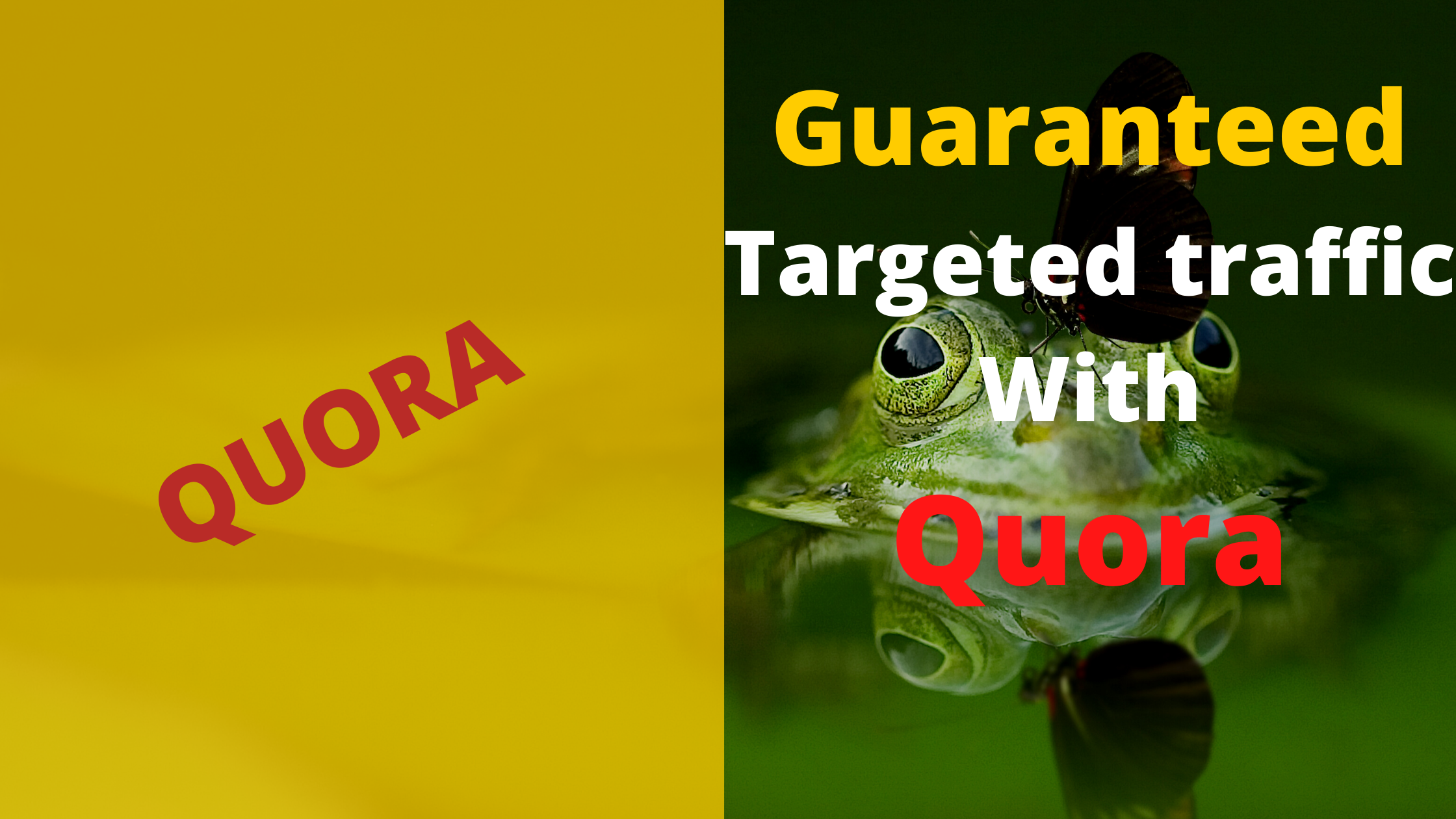 I will offer guaranteed targeted traffic with 40 quora answer.