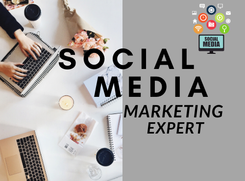 I will develop your social media marketing manager