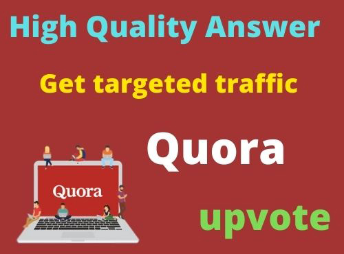 Provide 25 HQ Quora answer with backlink for your website