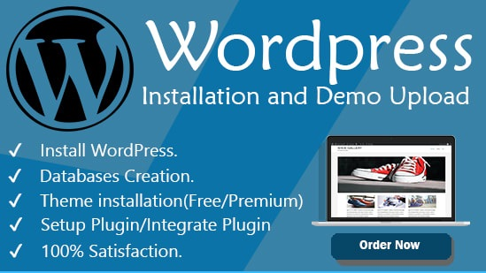 I will install WordPress theme and complete your business website