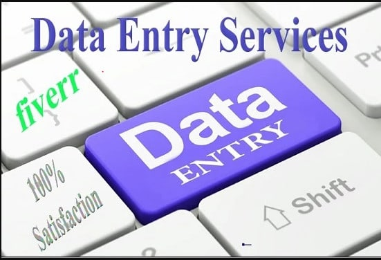 I will do excel data entry,  web research,  data entry,  copy paste,  virtual assistant