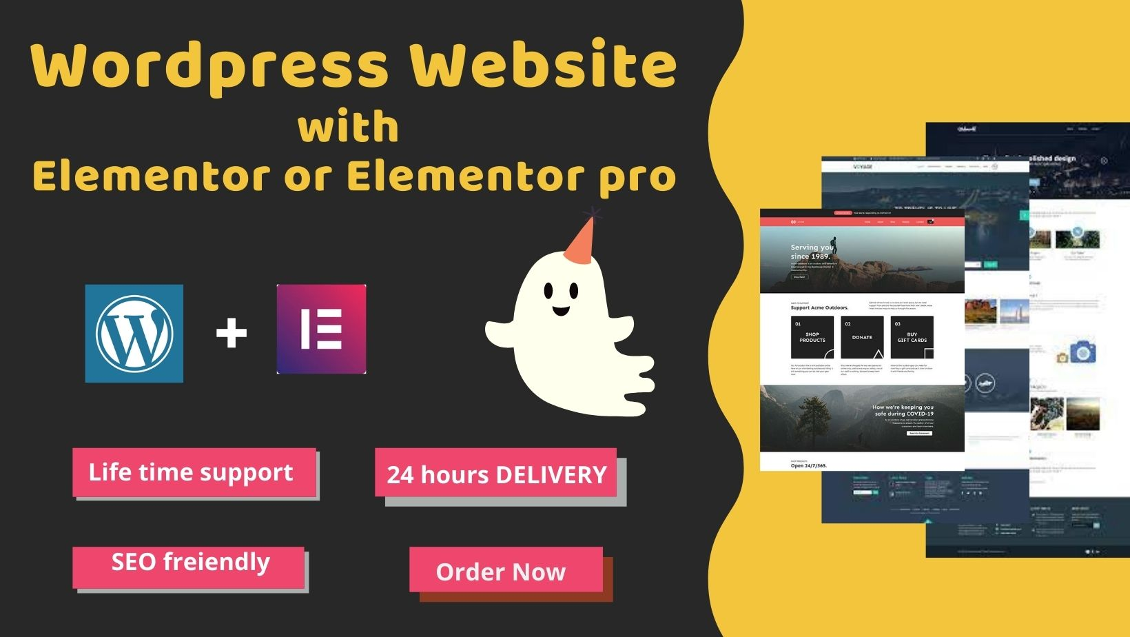 I will Design, redesign, duplicate any wordpress website with Elementor pro