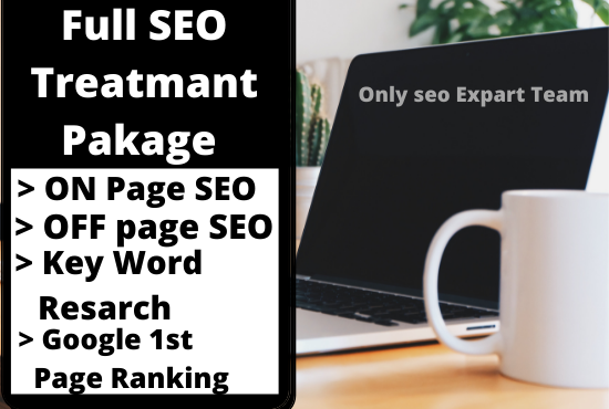 I will Give Full SEO Treatment Package