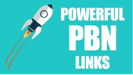 I will Provide 25 High Quality Homepage PBN Backlinks