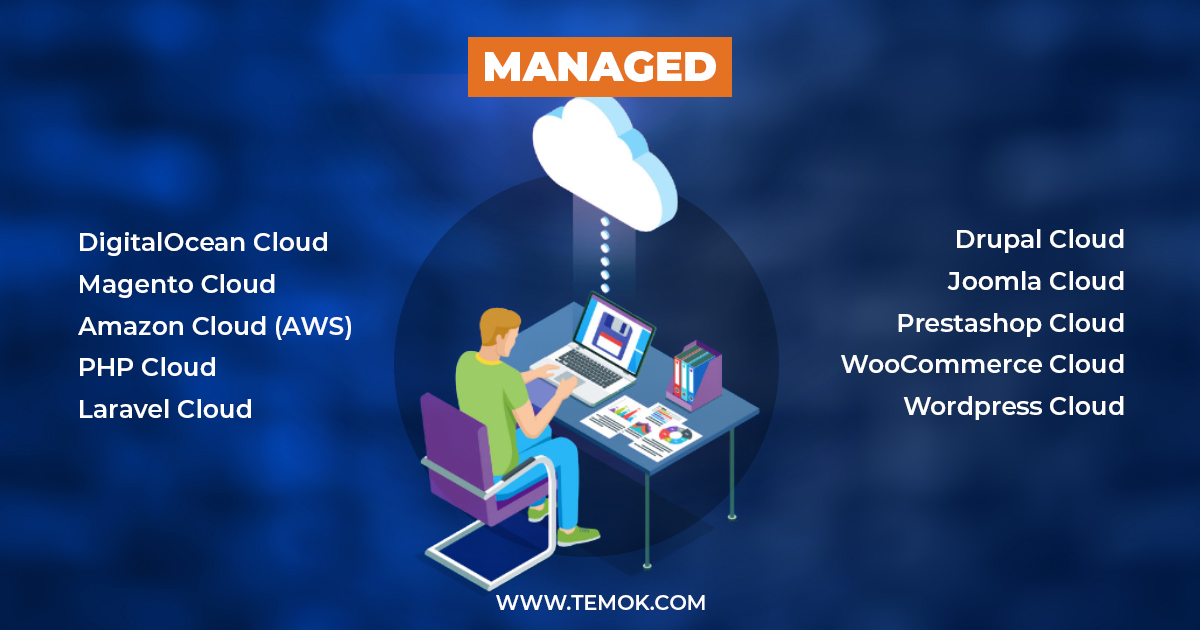 Best Web Hosting Solutions Temok IT Services