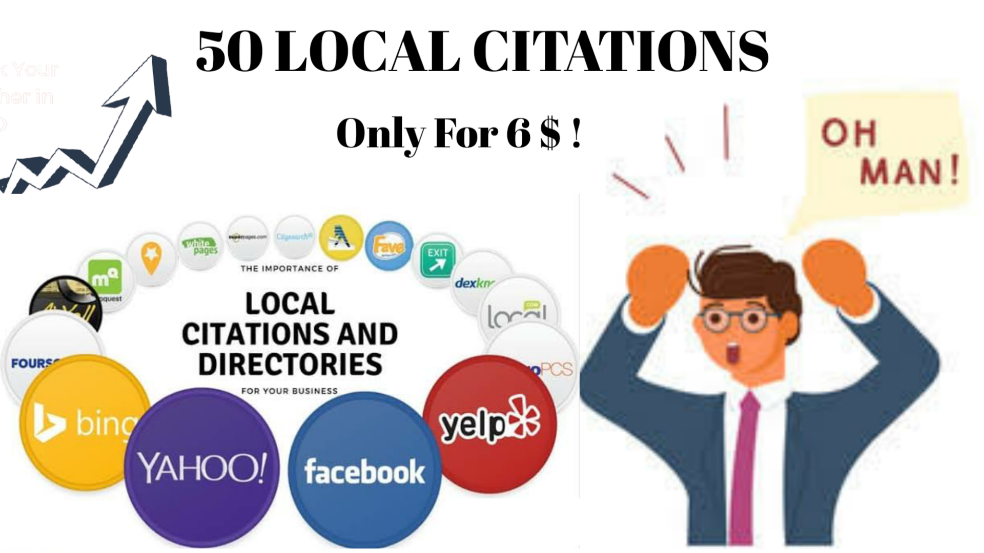 I will do 50 USA/UK/Australia/Canada Local Citations or Local SEO Business Listings.