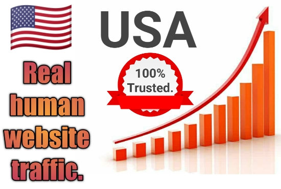 I Will bring USA targeted daily real Organic web traffic