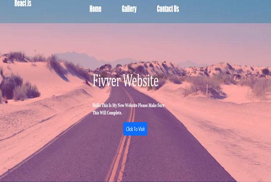 Professional Web Designer And Web Developer