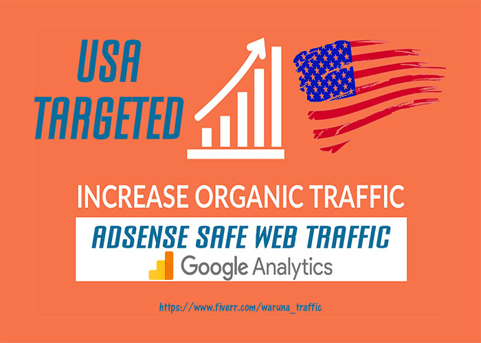 send real USA web traffic visitors to your website