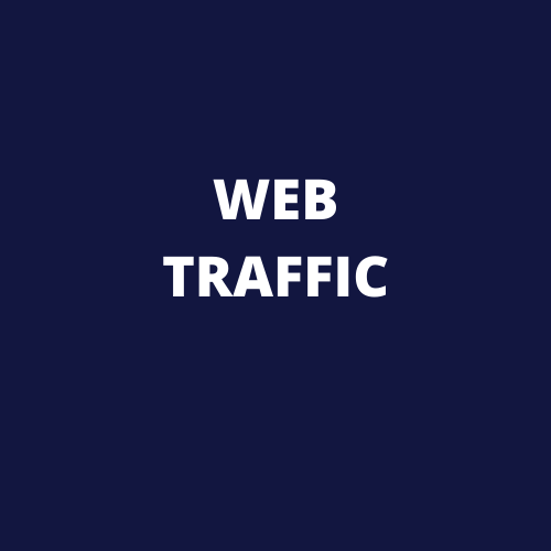 I will do provide USA web traffic