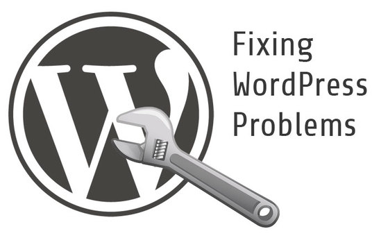Fix wordpress issues,  bugs,  errors within 24 hours