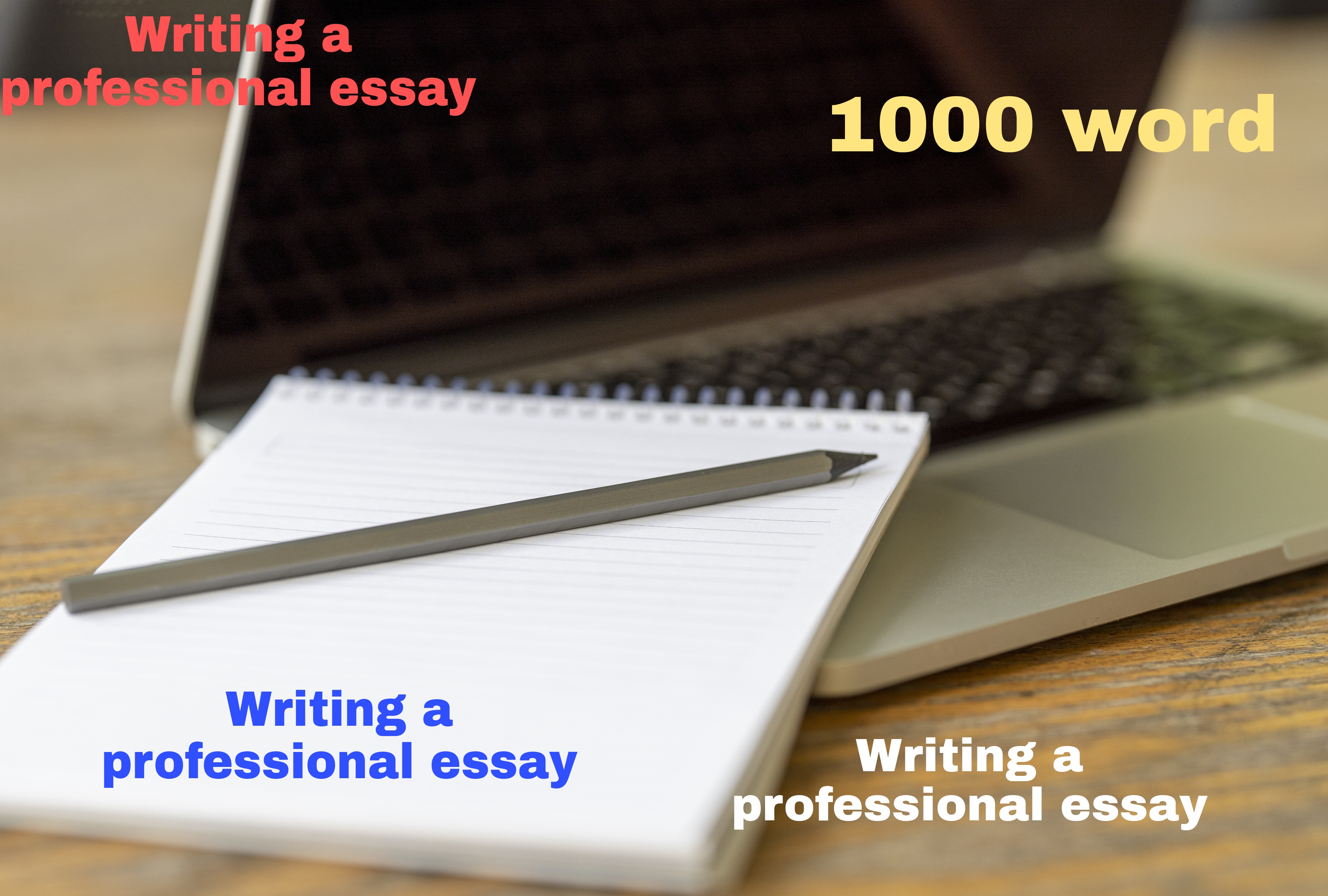 Writing a professional article in all the fields you want You can write a thousand words or more