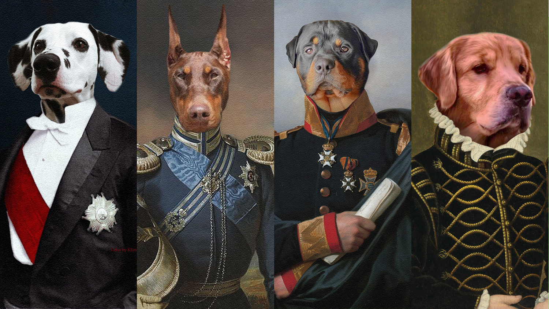 You will get high-quality royal pet custom portrait