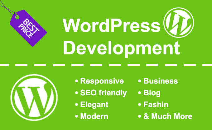 You will get A professional WordPress blog website expert developer