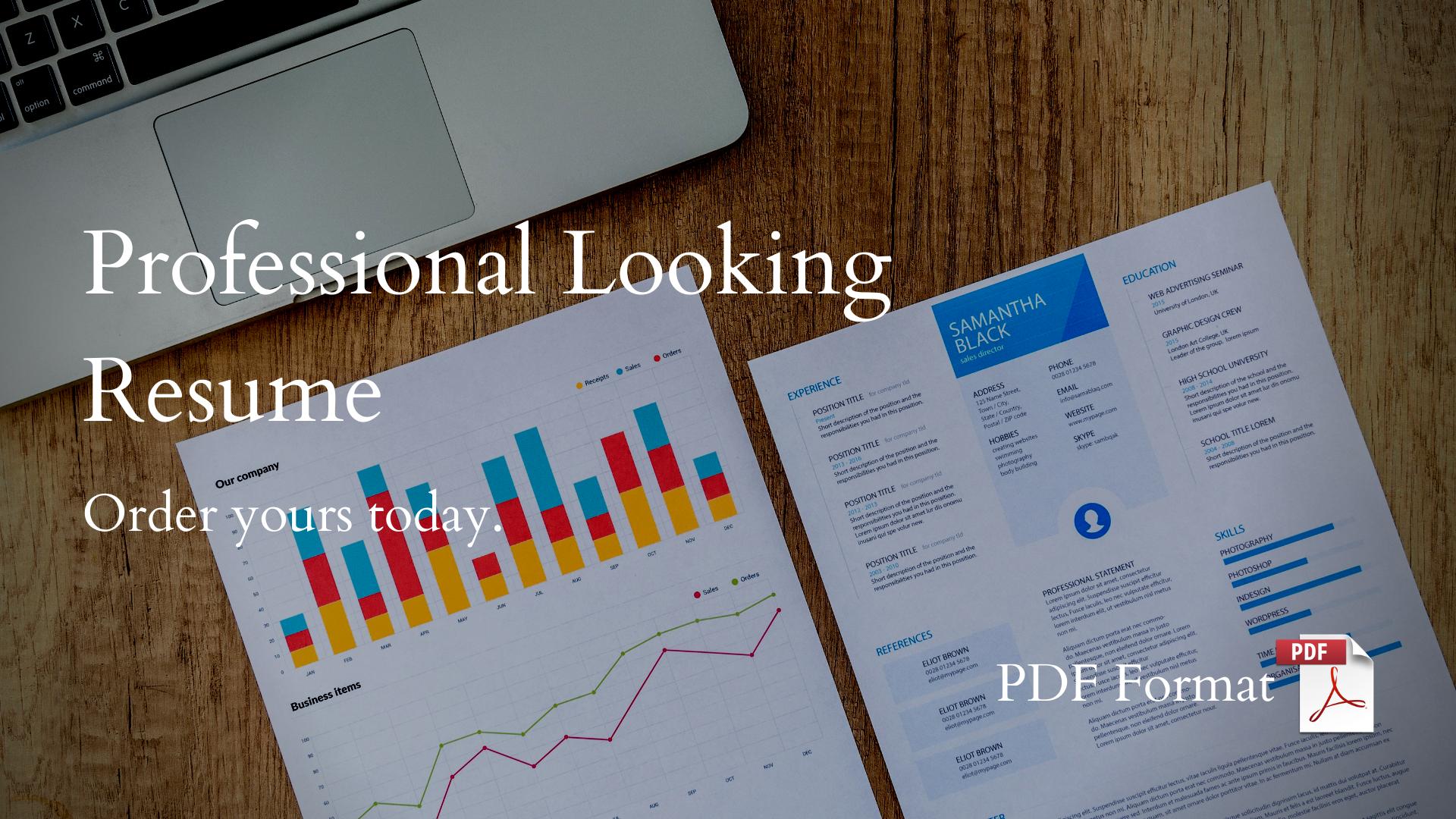 Professional Looking Resume Design