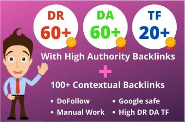 I will manual web 2 0 blog service