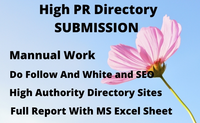 I will create 100 directory submission SEO backlinks.