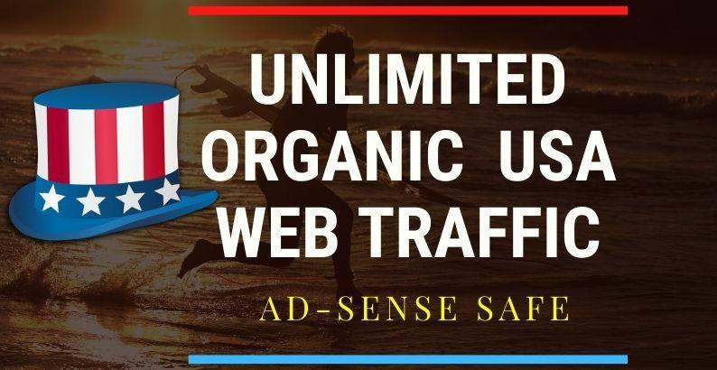 33.8k usa web traffic keyword target USA website traffic