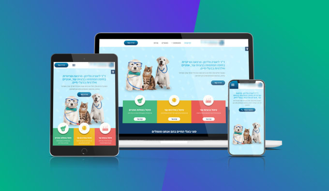 I will do web design landing page