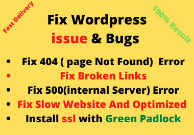I will fix WordPress Error, Fix 404 Page Not Error FIx 500 internal Server Error Fix Broken Links