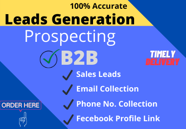 I will do b2b lead generation,  collect business leads and Prospecting