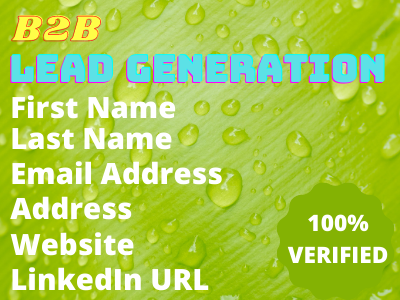 You Will get targeted b2b lead generation LinkedIn lead service (100% verified email)